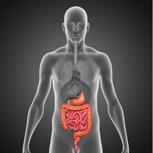 New Research Finds Switching to CT-P13 Is Safe in IBD, and So Is Switching to the Reference