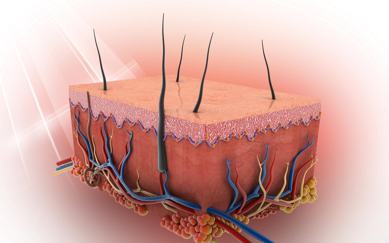 Study: Adalimumab Plus Hydroxychloroquine Leads to Hair Regrowth in Lichen Planopilaris
