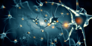 Targeting Multiple Pathological Proteins May Be Key to Treating Neurodegenerative Diseases