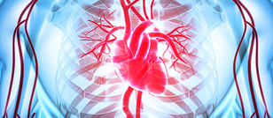Amgen's Trastuzumab Biosimilar, Kanjinti, Clinically Similar to Herceptin in Cardiac Safety