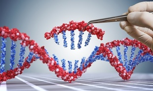 CRISPR-Gene Editing Technology Successfully Treated Lethal Lung Disease in Animal Models