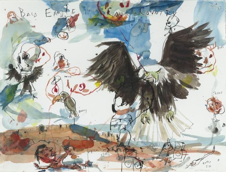 Bald Eagle in Condor Country