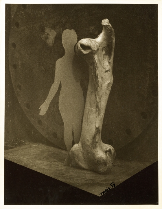 Untitled (bone and paper cutout of human body)