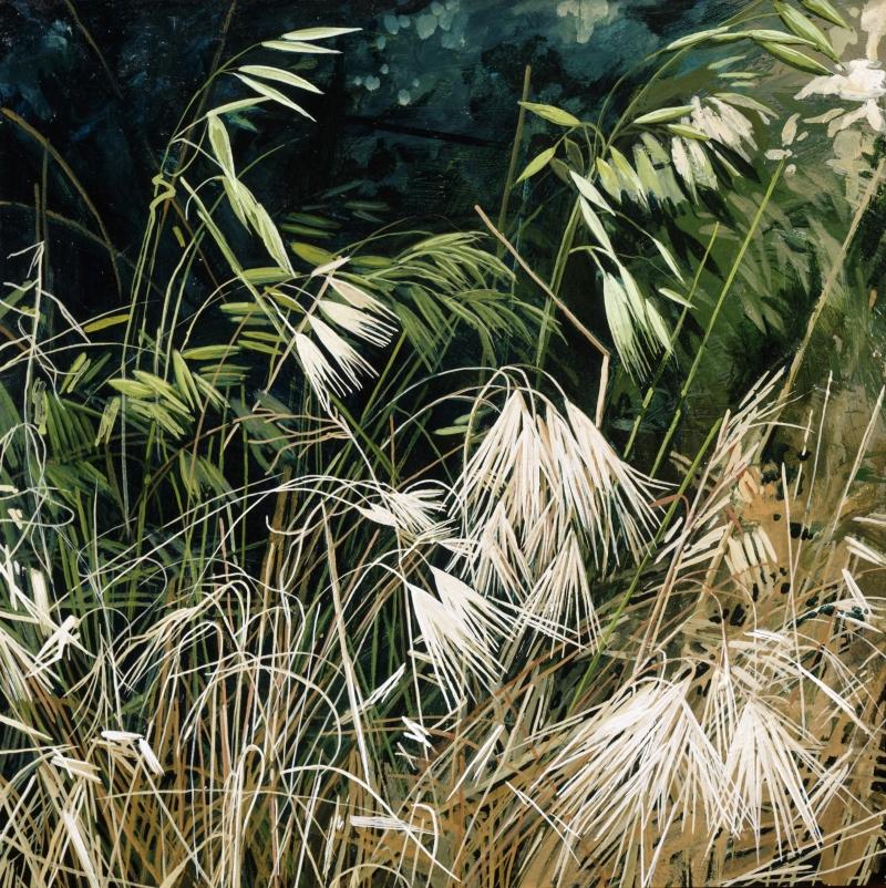 American Grasslands:  Prairie #8