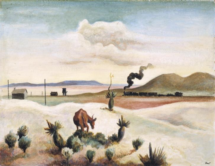 New Mexico (Landscape)