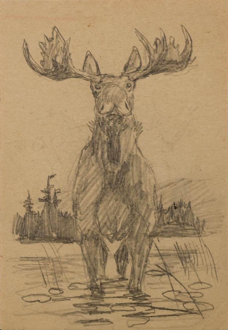 Untitled (Moose)
