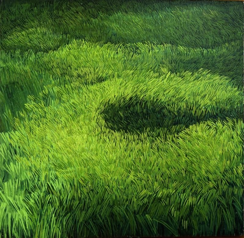 American Grasslands:  Lawn #9