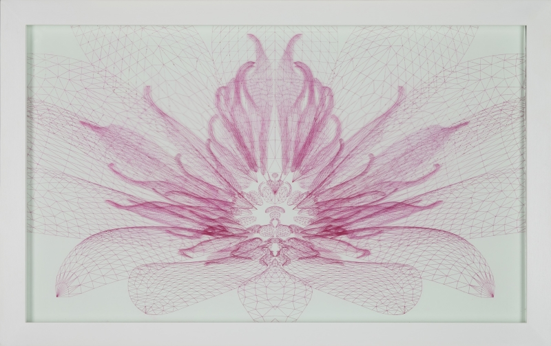 Pollinator (water lily) #2 2012