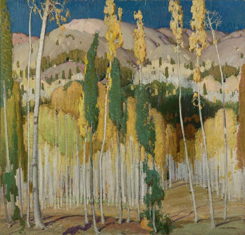 Aspen Trees at Twining