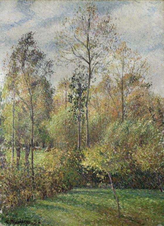 Autumn, Poplars, Éragny (Automne, Peupliers, Éragny)