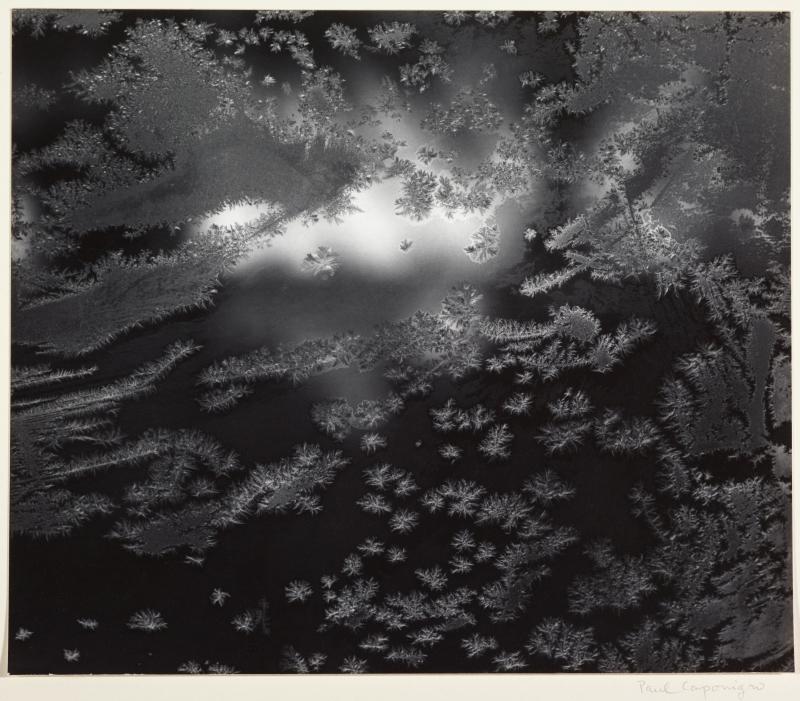 Frost Window #1, Revere, Mass