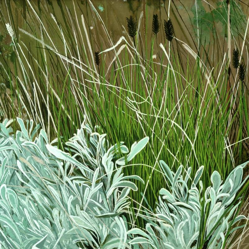 American Grasslands:  Prairie #4