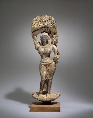 Virksha Devata (tree goddess)