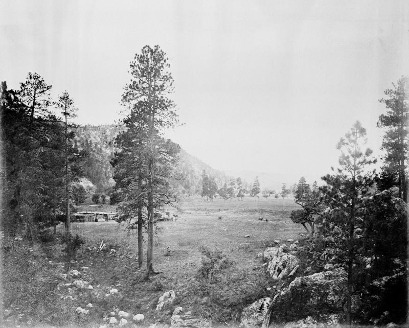 Cooley's Park, Sierra Blanca Range, Arizona