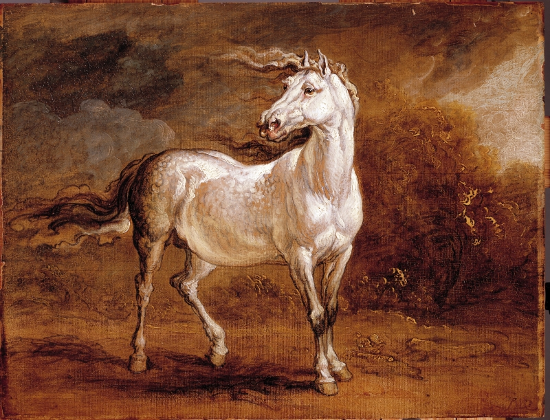 A Cossack Horse in a Landscape