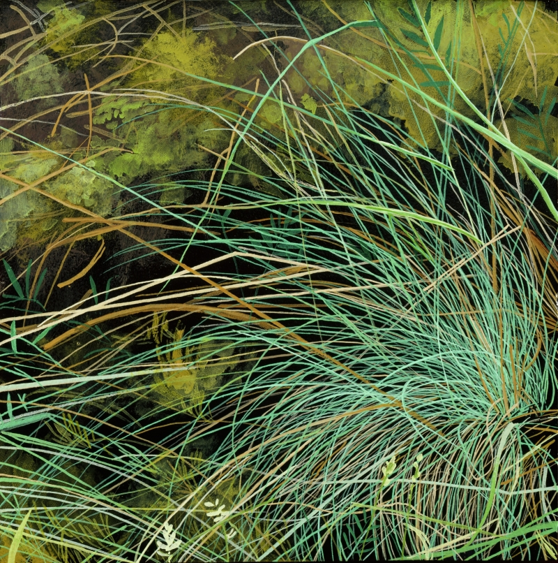 American Grasslands:  Prairie #3