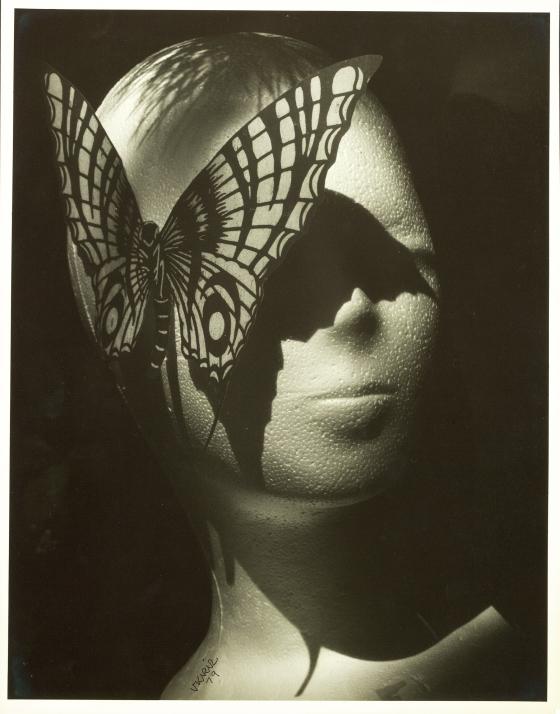 Untitled (Foam head with butterfly)