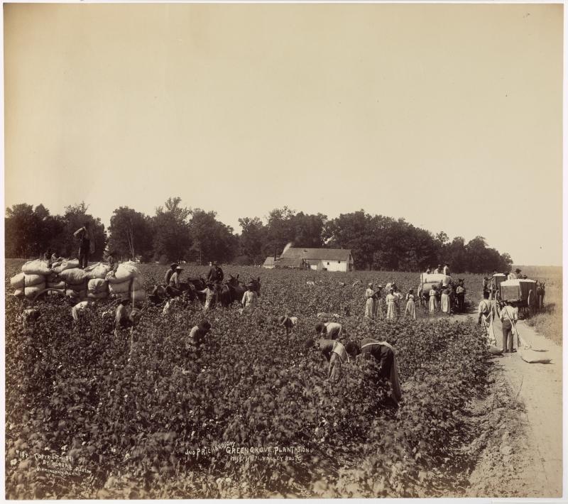 Jno. P. Richardson's Green Grove Plantation, Mississippi Valley Route