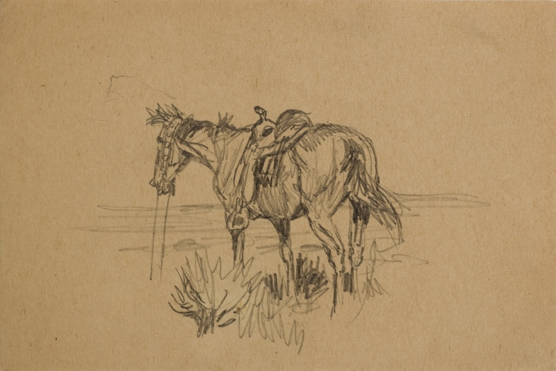 Untitled (Horse with a saddle in grass)