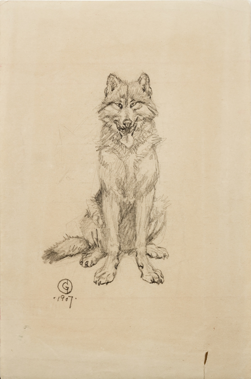 Untitled (Wolf)