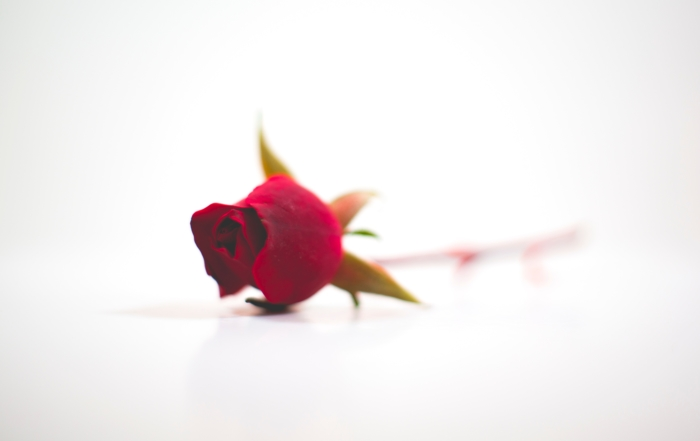 Are you a believer in Romantic Love… Why?