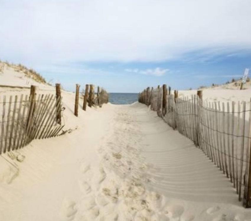 Coastal Art