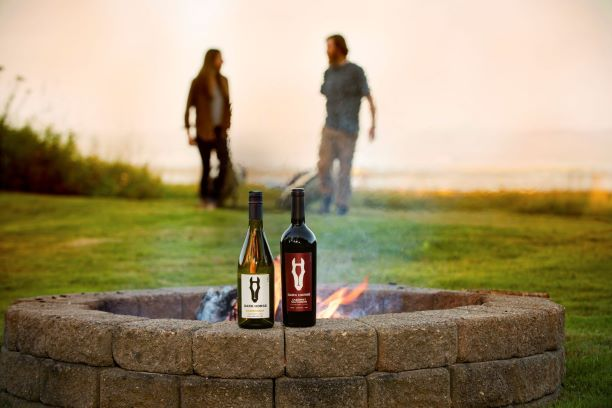 Dark Horse Chardonnay and Cabernet Sauvignon by a campfire