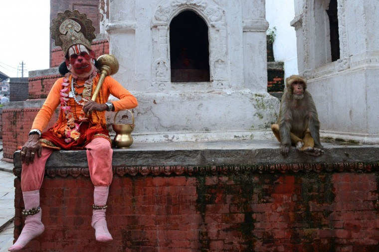 A sadhu (Hindu holy man) dressed as Hanuman, the Hindu monkey god, looks on while sitting next to a macaque monkey at the Pashupatinath Temple area in Kathmandu on July 15, 2014. Hanuman, known for his strength, is worshipped for his unyielding devotion to Lord Rama and is remembered for his selfless dedication to the diety. (AFP PHOTO/Getty Images/Prakash Mathma)