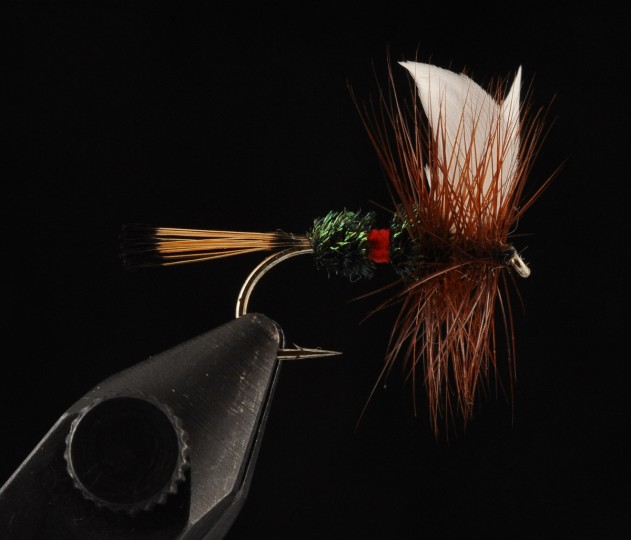 This is the Royal Coachman, a traditional attractor May fly, used for trout fishing. (Kenneth K. Lam/Baltimore Sun)