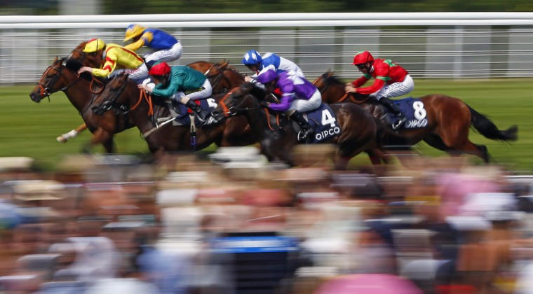The field from The Qatar Bloodstock Richmond Stakes races for the finish line at Goodwood racecourse in southern England, July 31, 2014. REUTERS/Eddie Keogh