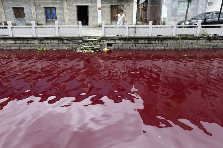 A man looks at a contaminated river in Cangnan county of Wenzhou, Zhejiang province on July 24, 2014. Local authorities said the water in the river turned red after several buckets of red dye were misplaced near the riverbank and the local environmental protection administration did not find harmful substances in the water, local media reported. (REUTERS/Stringer)