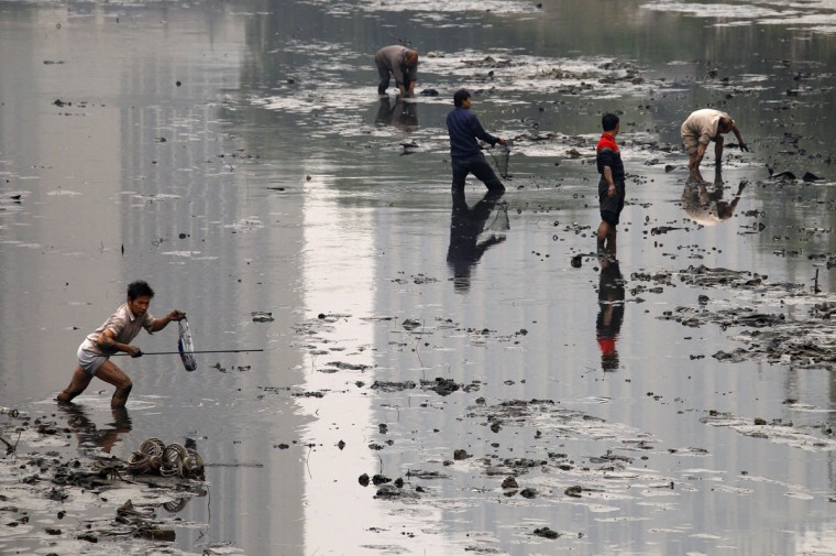 Fishermen walk through the muddy bottom of a polluted canal collecting fish in central Beijing on October 21, 2010. (REUTERS/David Gray)