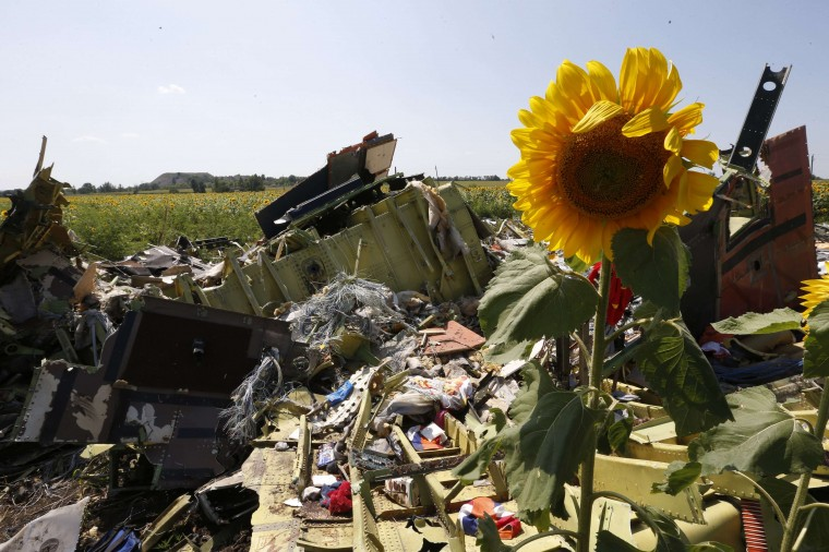 Wreckage and debris are seen at the crash site of Malaysia Airlines Flight MH17 near the village of Hrabove (Grabovo), Donetsk region. Nearly 300 people, 193 of them Dutch citizens, were killed when the Malaysia Airlines plane en route from Amsterdam to Kuala Lumpur was brought down in eastern Ukraine, where separatists are battling government forces, on July 17. (Sergei Karpukhin/Reuters)