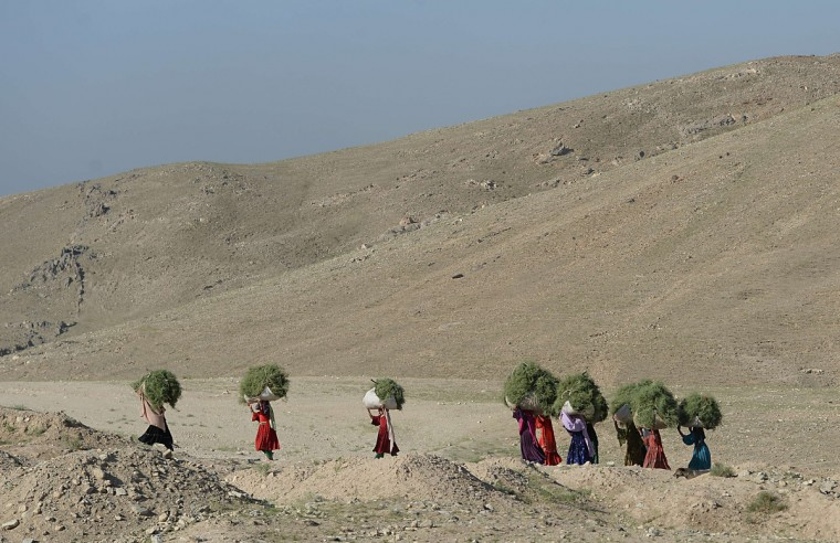 Kochi women carry rubbish on their heads along the Kabul-Bagram road, north of Kabul. Poverty and an ongoing insurgency by the ousted Taliban still pose a threat to the stability of the country. (Shah Marai/Getty Images)