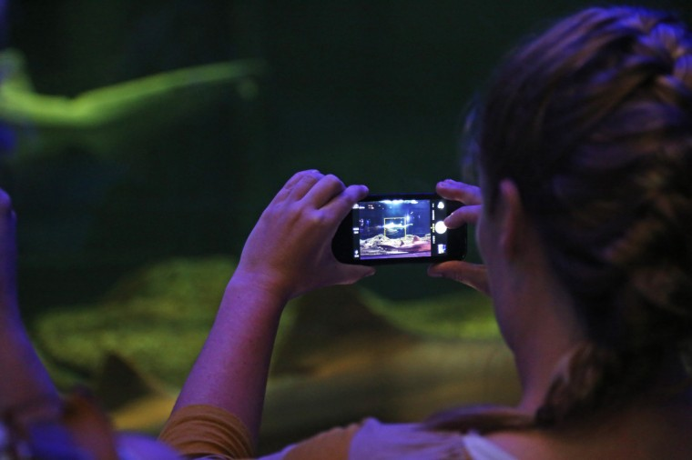 Liz Glomb, 31, from Gaithersburg, Md takes a iPhone shot of a shark swimming by in the Black Tip Reef Exhibit. (Kaitlin Newman for Baltimore Sun)