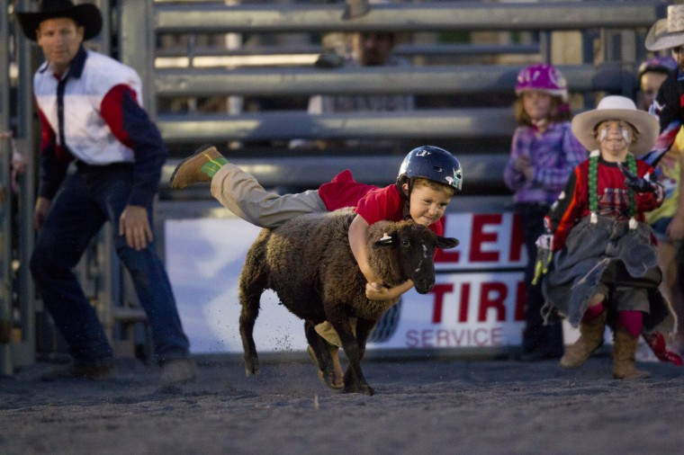 Gavin Smith, 5, of Cooksville hangs onto a sheep for the mutton busting competition during the Bull Blast at the 69th Annual Howard County Fair in West Friendship on Monday, August 4, 2014. (Jen Rynda/BSMG)