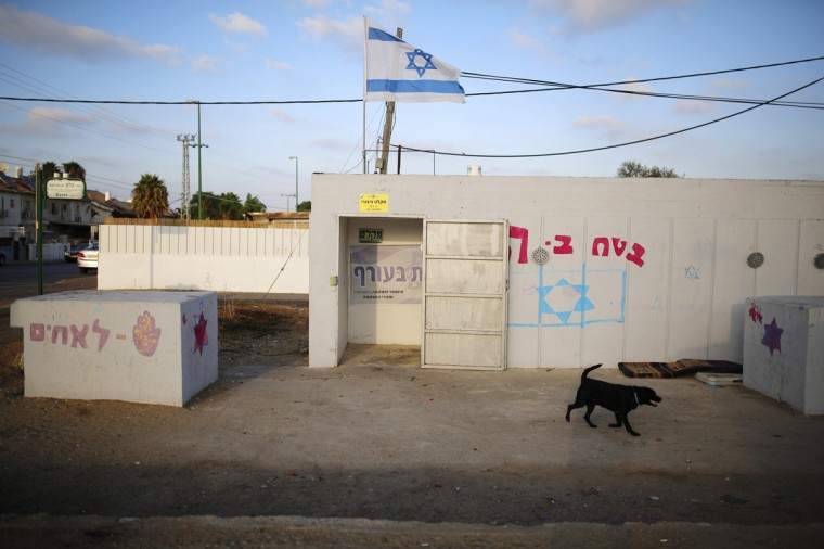 A dog walks next to the entrance to a bomb shelter in the Israeli southern city of Ashkelon July 31, 2014. Israel declared a Gaza ceasefire over on Friday, saying Hamas militants breached the truce soon after it came in effect and apparently captured an Israeli officer while killing two other soldiers. The 72-hour break announced by U.S. Secretary of State John Kerry and U.N. Secretary-General Ban Ki-moon was the most ambitious attempt so far to end more than three weeks of fighting, and followed mounting international alarm over a rising Palestinian civilian death toll. Picture taken July 31, 2014. (Amir Cohen/Reutrs)