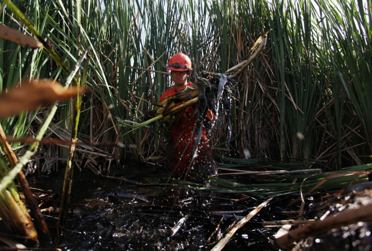 A worker cuts reed while trying to clean the area from leaked oil at an irrigation canal that flows into the river San Juan in Cadereyta on August 22, 2014. (REUTERS/Daniel Becerril)