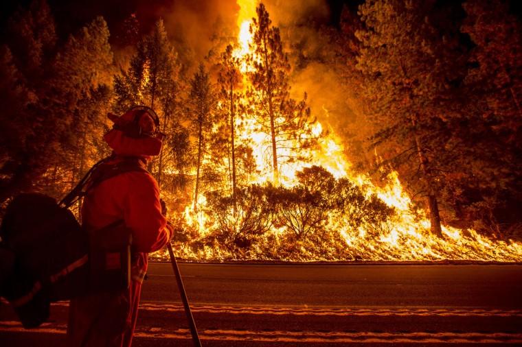 A firefighter battling the King Fire watches as a backfire burns along Highway 50 in Fresh Pond, California on September 16, 2014. (REUTERS/Noah Berger)