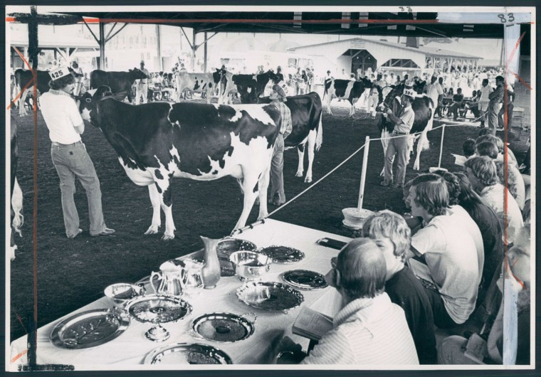 The Maryland State Fair in Timonium drew a Labor Day crowd of 60,000 on Sept. 3, 1974. (Weyman Swagger/Baltimore Sun)