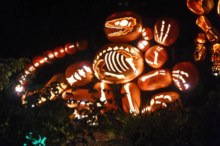 "Jack-o'-lanterns are displayed at the ""Rise of the Jack-O'-Lanterns'' exhibition, featuring more than 5,000 hand-carved, illuminated pumpkins created by professional artists and sculptors in La Canada Flintridge, California. The exhibit is laid out along a 1/4-mile (0.4km) scenic trail at Descanso Gardens. The Halloween event will continue through November 2. (Robyn Beck/Getty Images)"