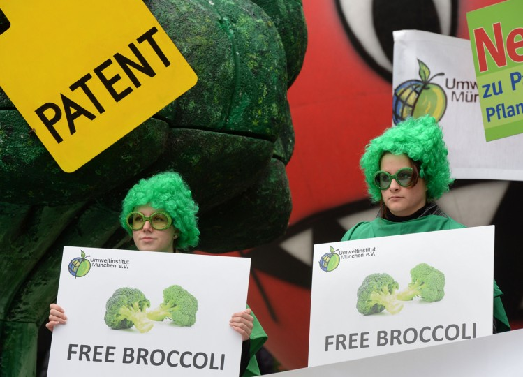 """Ecological activists hold posters reading """"free broccoli"""" as they demonstrate in front of the European Patent Office (EPO) in Munich, southern Germany, on October 27, 2014 to protest against patents on plants and animals. Oral proceedings in the socalled patenting case """"Tomatoes / Broccoli II"""" on the breeding methods were scheduled on October 27, 2014 by EPO's enlarged board of appeal. (Christof Stache/AFP/Getty Images)"""