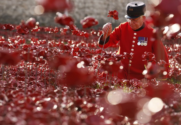 "Chelsea Pensioner Albert Willis plants a ceramic poppy amongst other poppies that form part of the art installation called ""Blood Swept Lands and Seas of Red"" at the Tower of London October 9, 2014. The evolving art installation, which will be completed on November 11, will create a commemoration for the centenary of World War One. (Luke MacGregor/Reuters)"