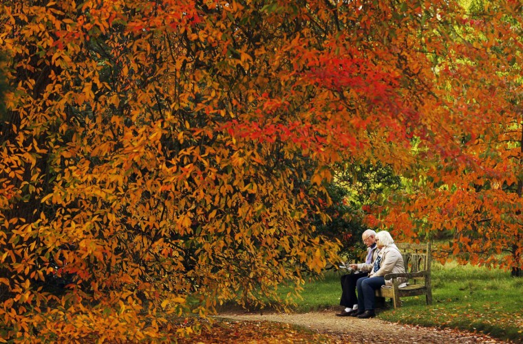 A couple sits under trees in autumn colour at Sheffield Park Garden near Haywards Heath in southern England October 20, 2014. (Luke MacGregor/Reuters)