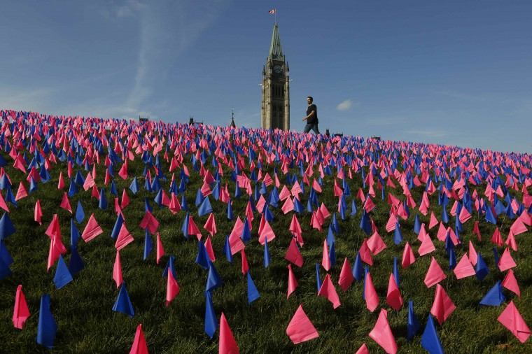 A man walks past thousands of pink and blue flags an anti-abortion group placed on the front lawn of Parliament Hill as part of a campaign in Ottawa October 2, 2014. (Chris Wattie/Reuters)