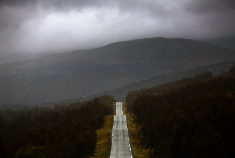 A road cuts through a forest during a rainy day on the island of Senja, north of the Arctic Circle in Norway September 29, 2014. (Yannis Behrakis/Reuters)
