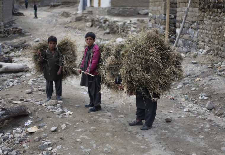 Three boys carry hay in the village of Askole in the Karakoram mountain range in Pakistan September 11, 2014. (Wolfgang Rattay/Reuters)