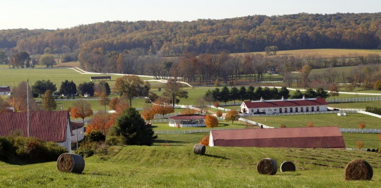 Located in Glyndon, Md. Sagamore Farm was founded in 1925 by Issac Emerson before being given to Alfred G. Vanderbilt in 1933 at which point it become an important farm for Thoroughbred horse training and breeding. Cassidy Johnson/Baltimore Sun