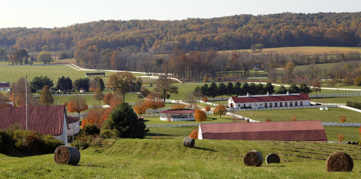 Sagamore Horse Farm In The Autumn