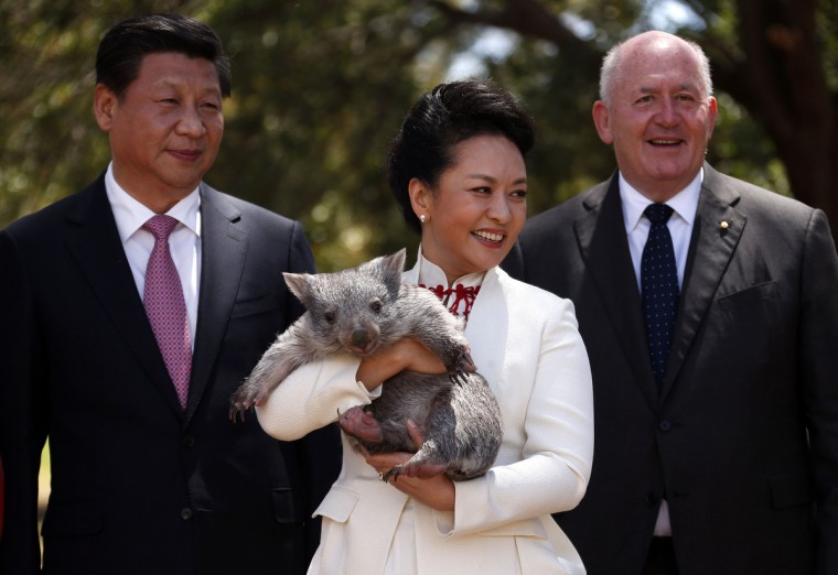 Australian Governor General Peter Cosgrove (R) stands with China's President Xi Jinping and his wife Peng Liyuan, as she holds a wombat in the grounds of Government House in Canberra, Australia. President Xi Jinping of China will address parliament and attending meetings in Canberra following the G20 Leaders Summit in Brisbane. (Photo by David Gray/Getty Images)
